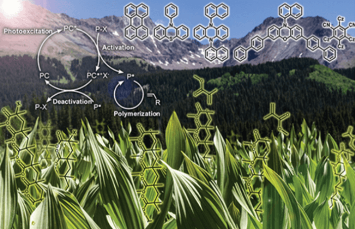 chemicals in nature graphic